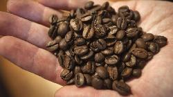 Amtrada agrees to sell global bulk coffee activities to Sucden