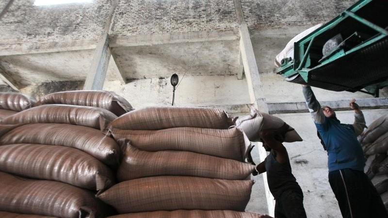 SOFTS-Raw sugar edges up on tight supplies, arabica rebounds - Investing.com India