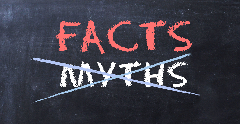 Chalkboard, Facts in red, Myths crossed out