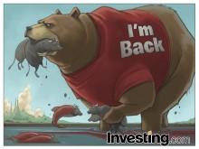 熊たちが、2016年に戻ってきた!