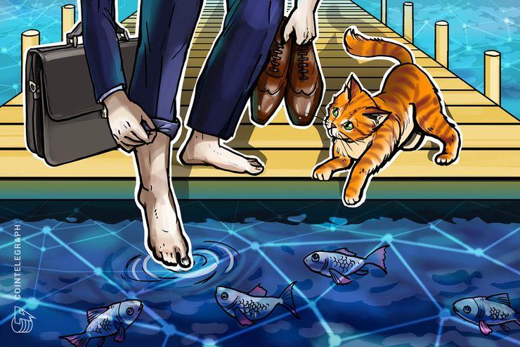 """Winklevoss Capital: Investidores estão """"molhando os dedos dos pés nos criptos,"""" e não mergulhando"""