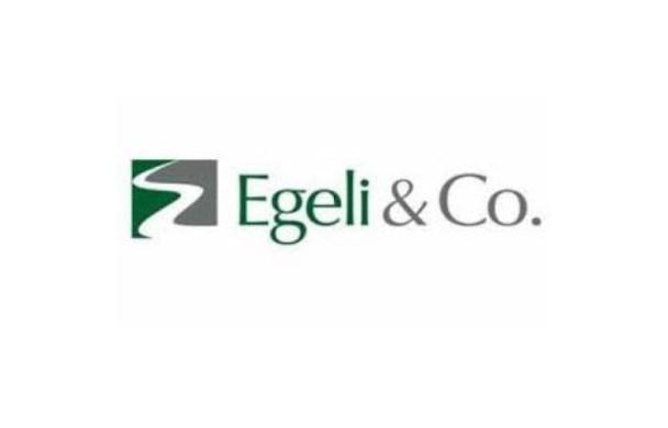 EGCYO, Tahsisli Sermaye Artırımdan Vazgeçti