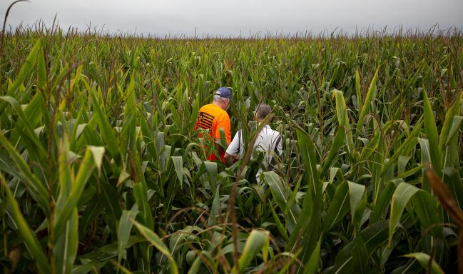 White House Weighs Moves to Blunt Farmer Fallout on Biofuel By Bloombe
