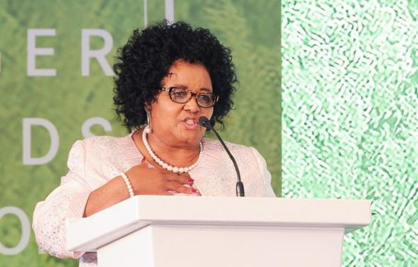 Parliament's environmental affairs portfolio committee pays tribute to late minister Edna Molewa