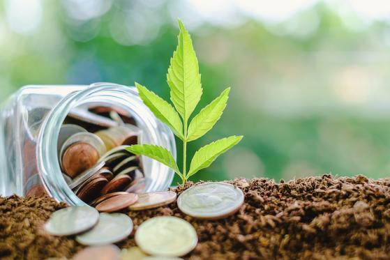 Economia green, l��Unione europea introduce le istruzioni per l��uso