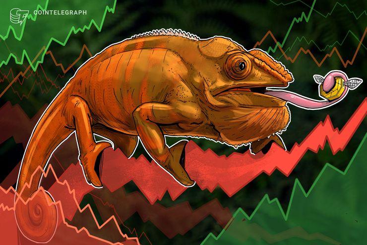 Bitcoin se mantiene por encima de los USD 3.550 mientras que las principales criptos muestran pérdidas