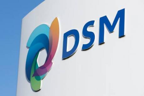 DSM wint zaak over gistpatent