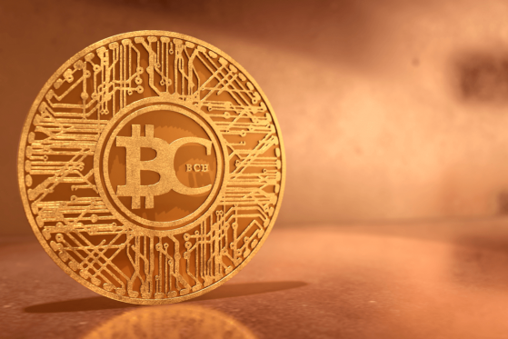 Poloniex Freezes Bitcoin ABC, SV Wallets for Blocked Transactions By