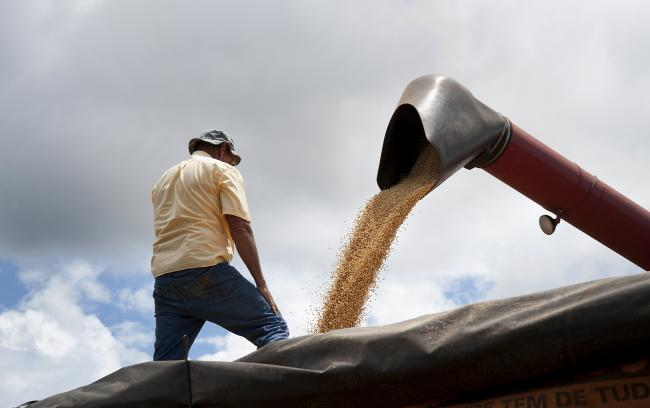 © Bloomberg. Harvested soybeans are transferred into grain carts at the Morro Azul farm near Tangara da Serra, Brazil, on Tuesday, March 27, 2012. Photographer: Paulo Fridman