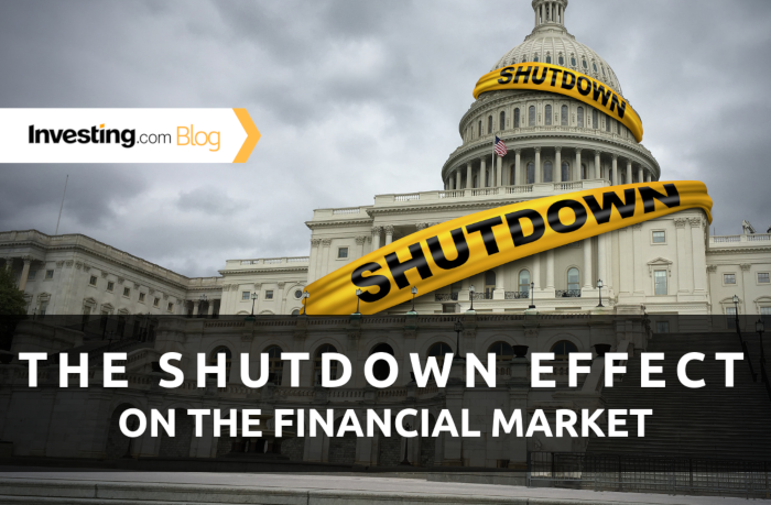 How the U.S. Government Shutdown Affected the Markets
