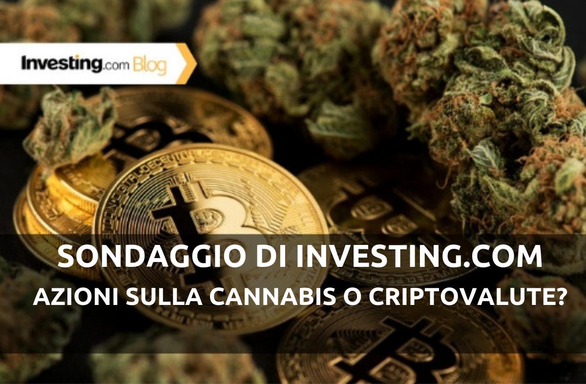 Sondaggio di Investing.com: azioni sulla cannabis o criptovalute? Ecco le vostre risposte!