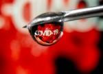 भारत बायोटेक COVID वैक्सीन के लिए बांग्लादेश ट्रायल चाहता है जो घर पर स्वीकृत है