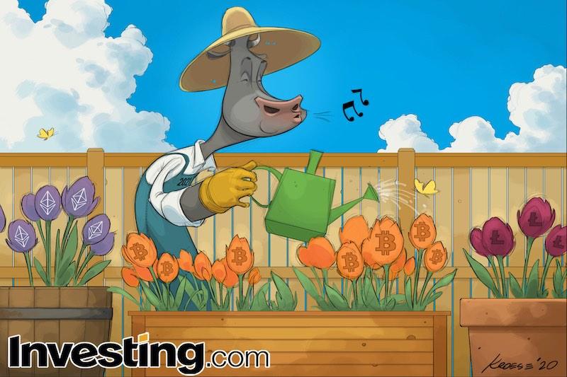 © Investing.com