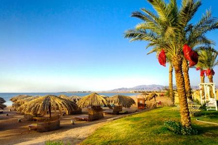 """""""مصر للسياحة"""" تطرح """"أبلكيشن"""" للترويج للمقاصد السياحية خلال 6 أشهر"""