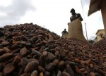 SOFTS-Cocoa slips as fund buying stalls, sugar extends gains