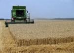 REPORTE ESPECIAL-Brasil, la tierra prometida para los fabricantes de pesticidas prohibidos