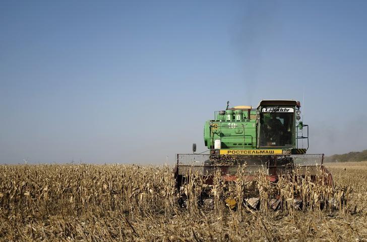 © Reuters.  U.S. Crop Report Signals Worsening Global Food-Insecurity Crisis