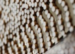 UPDATE 1-Tobacco industry blocking anti-smoking moves - WHO