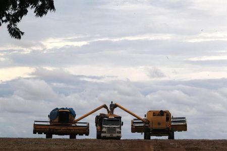 美国作物前景乐观,大豆举步维艰