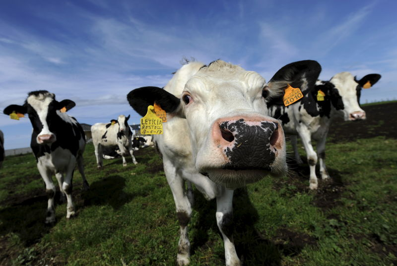 Ottawa to compensate dairy farmers hurt by European, Pacific trade dea