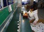 Inflação ao produtor de maio sobe na China pela segunda vez consecutiva