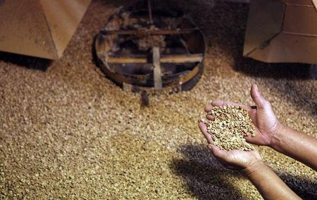 Brasil elevará embarque de café para 40 mi sacas em 2020/21, diz Safras & Mercado