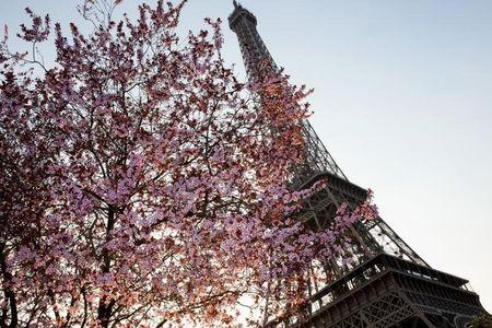 European Stocks Lower; France Downgrades 2020 Growth Forecast