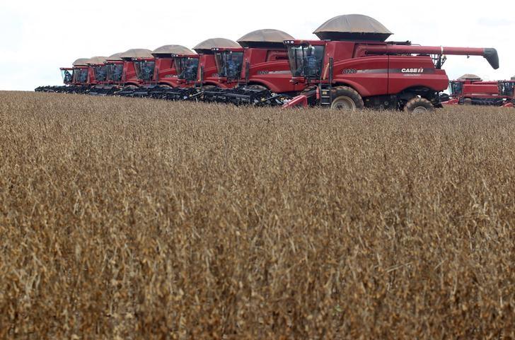 © Reuters.  Mercado otimista aposta em safra de soja do Brasil mais perto de recorde, apontam analistas