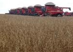 Onde está a soja que o Brasil importou dos Estados Unidos?