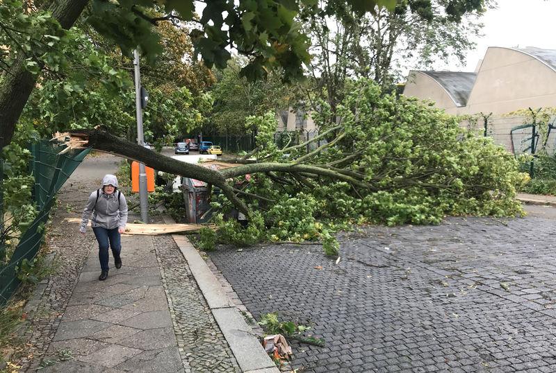 Reuters.  Франция, Португалия и Германия больше других развитых стран пострадали от последствий изменения климата - эксперты