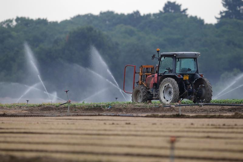 © Reuters.  Entregas de fertilizantes no Brasil crescem 8,1% em outubro, diz Anda