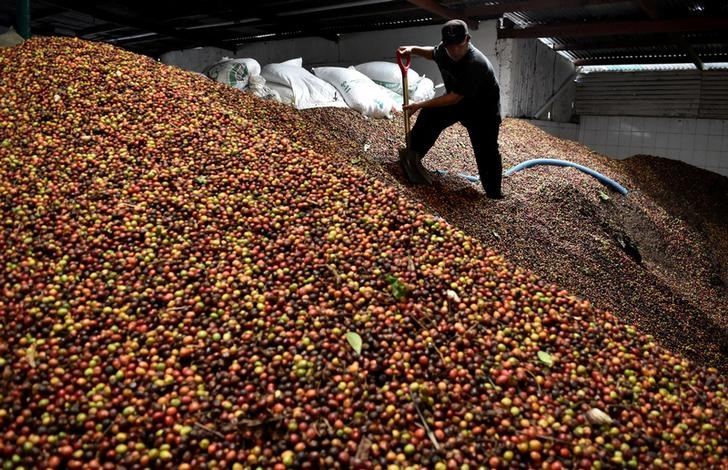 SOFTS-Arabica coffee futures ease, raw sugar climbs