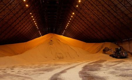 Exportações de soja do Brasil devem alcançar 77,5 mi t em 2020, estima Safras