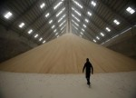 الجمارك: الصين تسمح باستيراد لب بنجر السكر من مصر