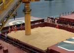 Embarques semanais de soja alcançam 3,1 mi de t; Milho soma 86,9 mil t