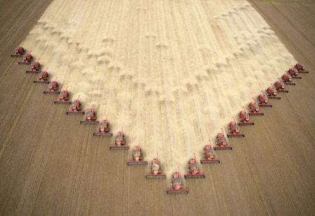 Soybeans May Be Next Market to Surge as U.S. Showers Drag On