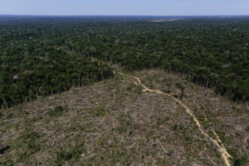 ENFOQUE-Terras indígenas sofrem com invasões sob diretriz de Bolsonaro