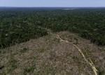 Bolsonaro indica ex-secretário de Alckmin para comandar Ministério do Meio Ambiente