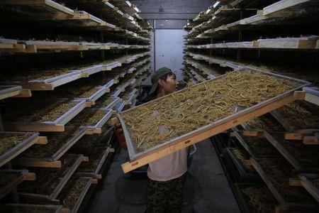 中國生產者價格指數: 5.5% 對 預測的 5.5%
