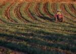 Rompimento comercial com árabes e China prejudicará o agronegócio
