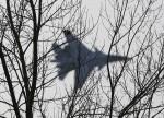 UPDATE 1-Australia, New Zealand deploy aircraft to Japan to help enforce N.Korea sanctions