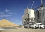 Utilidad neta de Gruma cae en tercer trimestre por mayores impuestos