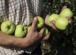 Irish nutrition company Glanbia stockpiling in UK ahead of Brexit