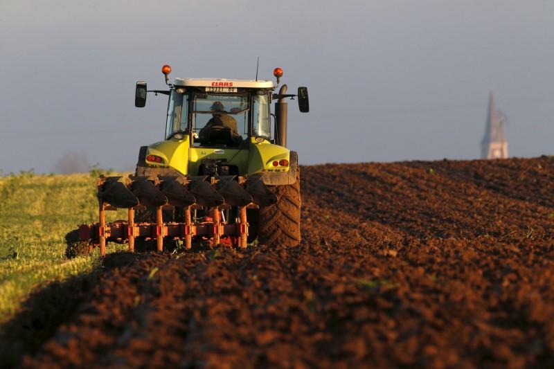 © Reuters.  U.S.-China Spat Risks Permanently Altering Trade, Cargill Warns