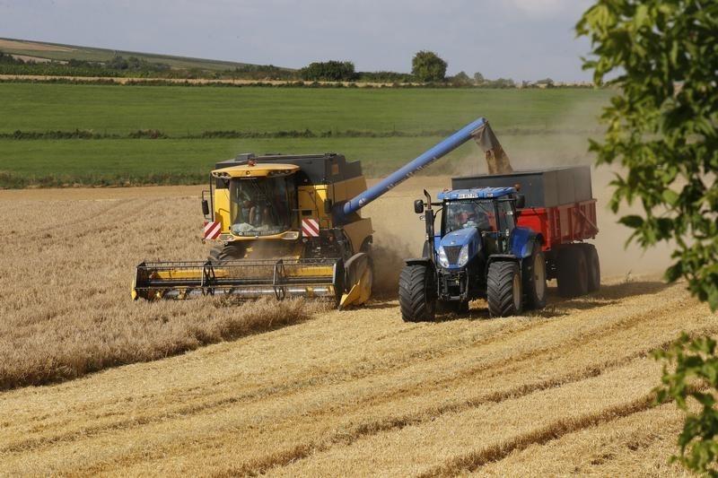 UPDATE 2-Ukrainian wheat is lowest offer in Egypt's GASC tender -trade