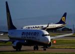 歐洲最大廉航瑞安航空股價反彈2% 擬於7月恢復1000架次航班