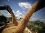 Wichtige Schlüsselmarke im Sojabohnen-Future