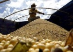 China's Imports of U.S. Soybeans Jump to Highest Since April