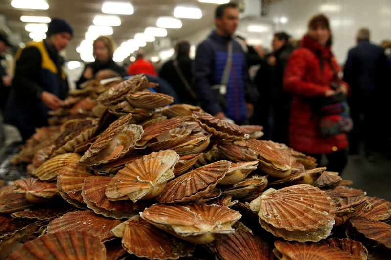 Grieg Seafood may sell its Isle of Skye fish farms By Reuters