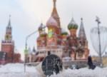 ЦБ рассказал, почему рубль ослаб в конце 2018 года